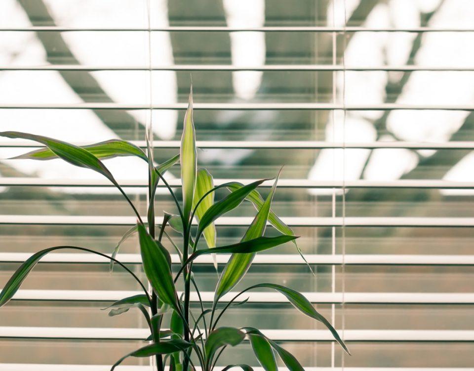 Rolety plisowane do okien balkonowych